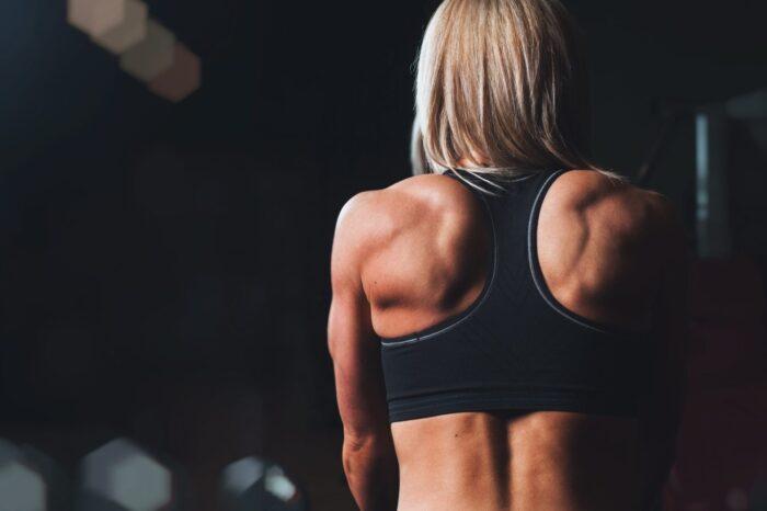 Le fibre muscolari: unità fondamentali